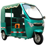 1200W Brushless Motor Electric Passenger Rickshaw
