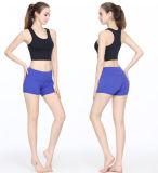 Gli articoli di sport di estate per le signore mettono gli indumenti in cortocircuito di allenamento delle donne delle parti superiori del colpo di yoga dei pantaloni di scarsità della maglia di forma fisica