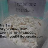 Преданный порошок Trenbolone Enanthate 10161-33-8 культуризма