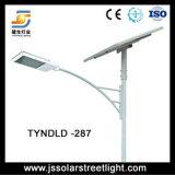 30W-80W LED 튼튼한 알루미늄 태양 가로등 ISO 세륨 태양 강화된 가로등