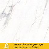 Telha branca de pedra de mármore Polished cheia vitrificada 600*600mm Calacatta--a