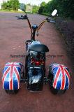 1000W 60V/20ah를 가진 Eelctric Harley 세발자전거