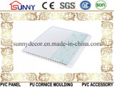 천장 벽면을 중국제 인쇄하는 위원회 /PVC를 인쇄하는 고품질 PVC