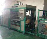 Machine en plastique à grande vitesse de Thermoforming pour le plateau NF1250b d'oeufs
