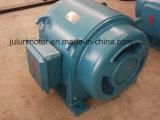 Motor asíncrono trifásico Js127-6-185kw de la trituradora del motor de la CA de la baja tensión de la serie de Js