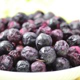 Blueberry Vacuum Freeze Dryer / Blueberry Freezing and Drying Machine