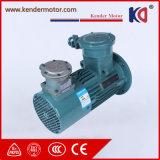 耐圧防爆誘導の可変的な頻度駆動機構ACモーター