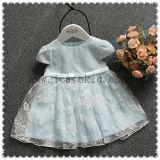 Baby-Kittel konzipiert Partei-Kleid-kleine Prinzessin Dress für Babys