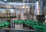 3in1 Monobloc Spoelende het Vullen het Afdekken Machine voor het Bier van de Fles van het Glas