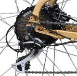 後部モーター(TDE10Z-2)を搭載する脂肪質のタイヤの電気バイク