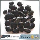 Natual polierte schwarzen Fluss-Stein für Wand und Bodenbelag