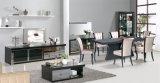 Conjunto moderno de los muebles de la sala de estar de los muebles caseros