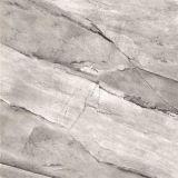 Marmor - wie Porzellan glasig-glänzende Fußboden-Fliese auf Philippine