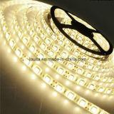 120LEDs/M SMD 3014 LED 지구 빛