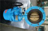 Двойная клапан-бабочка фланца с электрическим приводом (WDS)