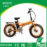 Bici eléctrica del neumático gordo del motor de la parte posterior de la potencia verde con LCD-Ys-F0720f