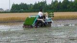 タイプ高速米の実生植物のTransplanterに乗る6列