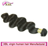 Xbl Fabrik Wholevirgin brasilianische Remy Haar-Extension