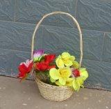 (BC-WF1035) Cesta natural hecha a mano respetuosa del medio ambiente de la flor del sauce