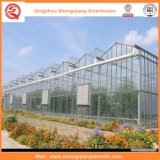Casas verdes de vidro da agricultura/anúncio publicitário/jardim com sistema refrigerando