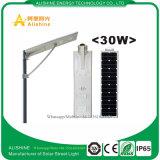 indicatore luminoso di via solare tutto compreso di 30W LED con il migliore prezzo