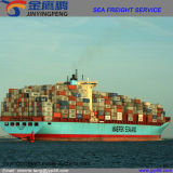 Agente de transporte do frete de China a Rússia