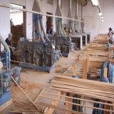 Le meilleur étage en bambou modelé par Li de Xing de vente