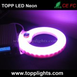 PVC 유리제 네온 보충을%s 유연한 네온 RGB LED 빛
