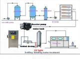 Fornitore puro della Cina del generatore dell'ozono dell'acqua potabile