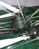 Bicicleta de montanha 2017 elétrica nova com bateria escondida