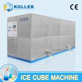 cubo de gelo da capacidade 10tons diária grande que faz a máquina para África