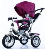 1台の子供の三輪車に付き最上質の4台は三輪車の赤ん坊の三輪車をからかう