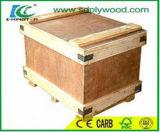 Contre-plaqué vertical de /CDX /Uty de contre-plaqué d'emballage de faisceau de peuplier