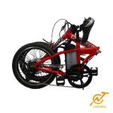 "20 "" 36V 250Wの子供のための小型ハブモーター折るEバイク"