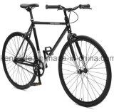 Bike шестерни горячей скорости сбывания 700c дешевой одиночной фикчированный Bicycles Sy-Fx70012