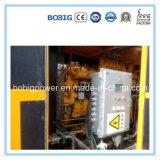 generatore del gas di 250kw 300kw 400kw 500kw 550kw