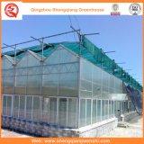 庭か野菜または花成長するのためのトンネルのパソコンシートの温室を耕作すること