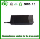 De externe Lader van de Batterij voor 13s 2A Li-Ion/lithium/Li-Polymeer Batterij