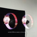 Projector van het Hologram van de hoge Resolutie 42X42 Cm Hypervsn 3D voor Reclame