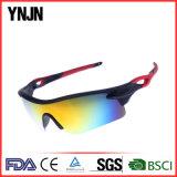 [ينجن] [هيغقوليتي] [أونيسإكس] ينهي رياضة نظّارات شمس ([يج-0290])