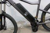 人山の電気バイク