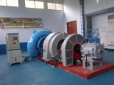 フランシス島のハイドロ(水)タービン発電機の水力電気Hydroturbine