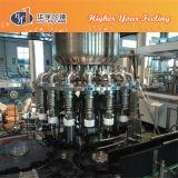 Hete het Vullen van het Sap van de Fles van het glas Machine