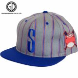 Casquette de baseball neuve personnalisée de Snapback de mode de la qualité 2016