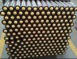 Schwerkraft Roller mit Plastic Bearing House