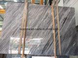 Grandes galettes de marbre italiennes de Bardiglio Nuvolato pour le plancher, mur