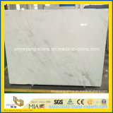 Castro White Marble Stone Tiles per Wall, Floor, Countertop (YYL)