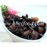 Fungo di legno del nero dell'orecchio della pianta naturale senza antiparassitari di verdure