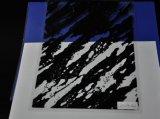 Película hidrográfica de la imagen líquida, impresión de la transferencia del agua, película de inmersión hidráulica para el item No. Lrd291A-1 de la venta