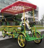 遊園地のための世帯の余暇の自転車